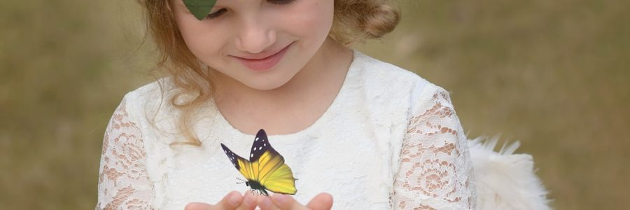 When a Butterfly Flies in Your Path: A Reflection on Happiness